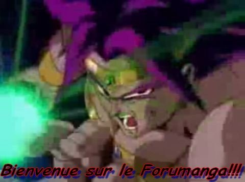Forum Bastonamanga 2009- Liste des sagas 2009- Sondages 2009-Albums photos 2009-Bonne visite! dans Forumanga broly1